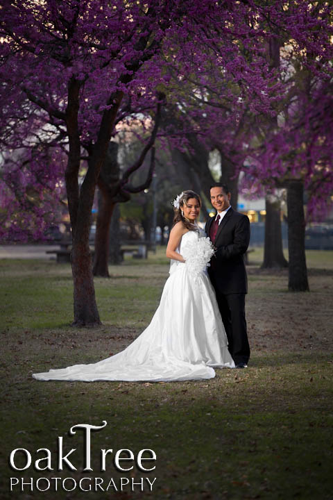 Wedding Portrait in Tulsa